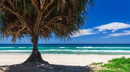 gold coast australia: Amazing sunny day on the Gold Coast, Australia Stock Photo