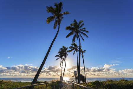 gold coast australia: Path leading to Gold Coast beach, Queensland, Australia