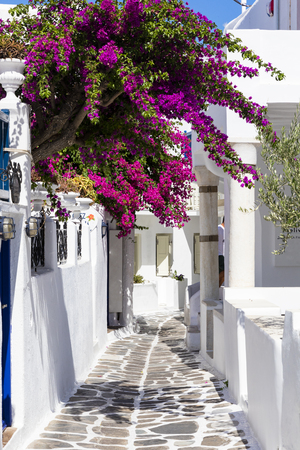 Colourful Mykonos walkway in summer