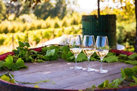 Weingläser auf bunten Weintrommel am Weingut
