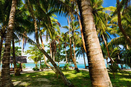 Tropical palm covered Guyam Island, Siargao, Philippines