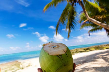 Frisch geschnittene Kokosnuss am unberührten tropischen Strand auf den Philippinen