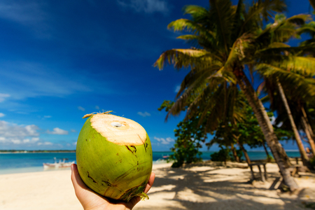 Freshly cut coconut on pristine tropical beach in the Philippines