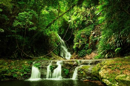 Elabana Falls waterfall in Lamington National Park, Queensland, Australia