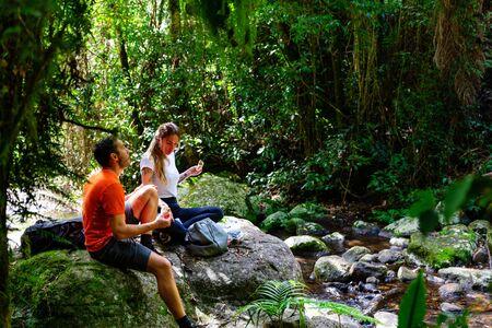 Couple enjoying lunch in lush Australian rainforest, QLD Stockfoto