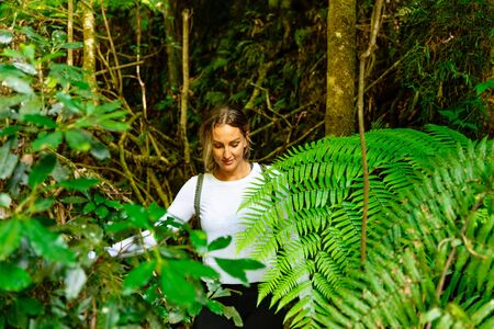 Woman exploring in tropical rainforest on Queensland's Gold Coast Hinterland, Australia