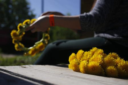spins: the girl spins a wreath from dandelions. Stock Photo