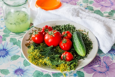 brine: Vegetable composition for for salting: cucumbers, tomatoes, fennel, green onions and brine jar on a table