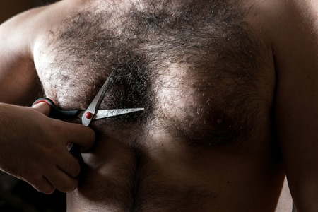 Closeup man with scissors cuts the hair on his hairy chest.
