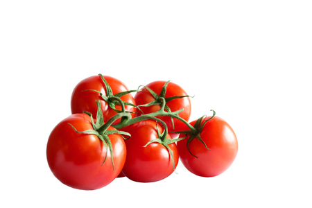 Branch of fresh red tomatoes isolated on white backround Natural retouched picture for packing.