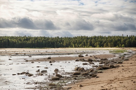 Beautiful taiga forest with boulders on the coast Stock Photo