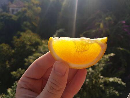 The sun enlightened by a slice of orange on the hand Reklamní fotografie