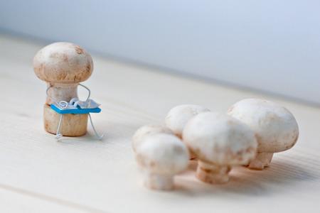 champignons: Champignons on training