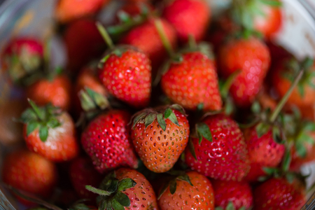 Close up of fresh organic strawberry harvest from local farm in Thailand. Stock Photo