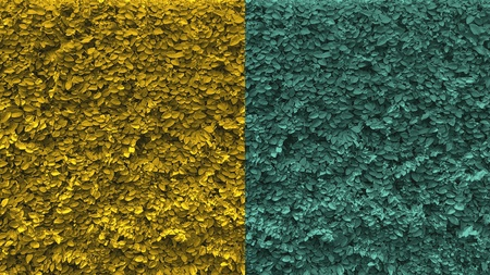yello: Wall of leaf with 2 tone color for bacground