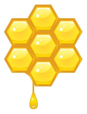 peigne: Rayon de miel