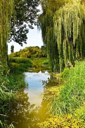 the danube: River Scenery Stock Photo