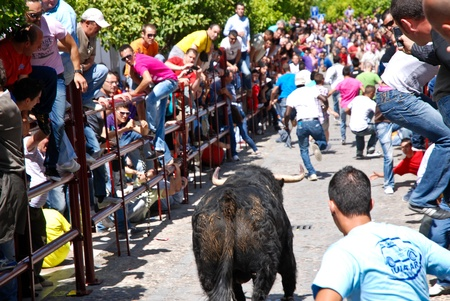Arcos De La Frontera - Spain, April 24, 2011 - Running With The Bull