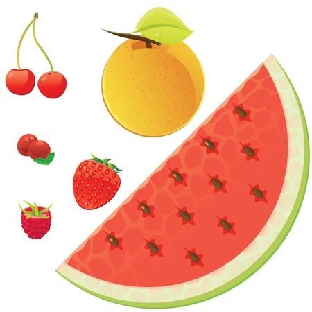 cowberry: Set of juicy summer fruits isolated on white background  Illustration