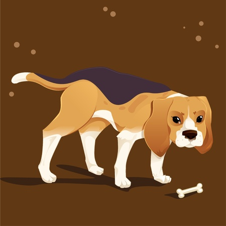 Beagle hound dog and food Vector