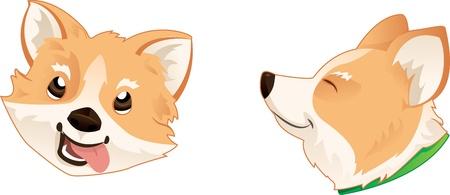 sheepdog: Pembroke Welsh Corgi Dog Head Illustration