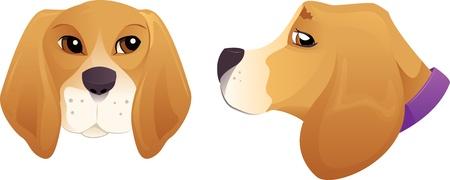 tete chien: Mignon ensemble t�te de chien Beagle