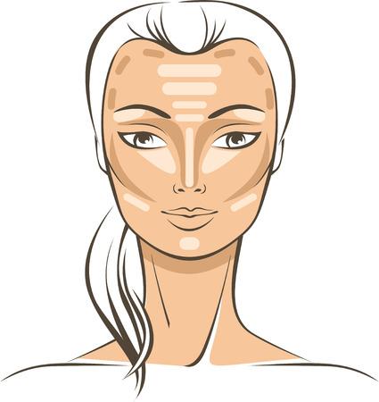 Face Sculpting With Makeup tutorial vector drawing