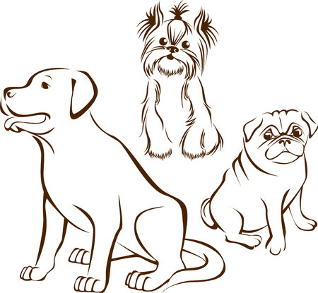 outline sketch  of different dogs breeds characters   Stock Illustratie