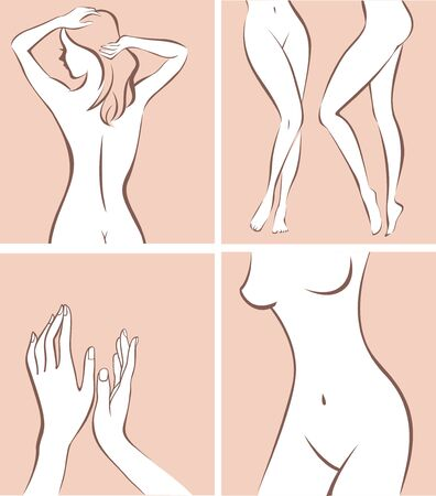 stylized female body parts outline drawing vector illustration
