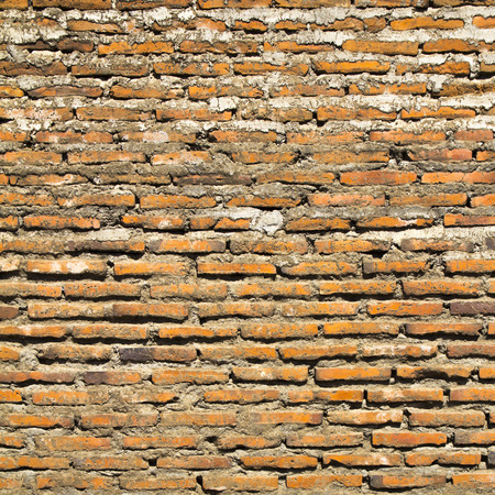 pillage: Brick wall on a sunny day