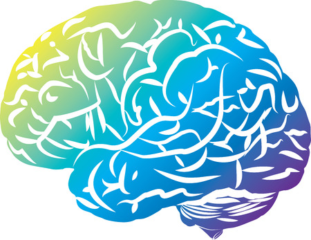 Colored brain, side view, simplified.