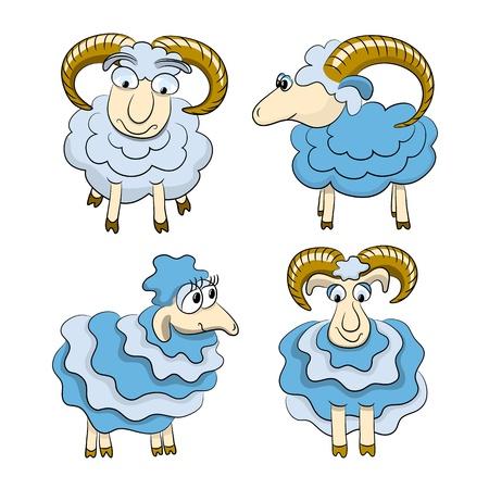 lamb cartoon:  Cartoon isolated sheep