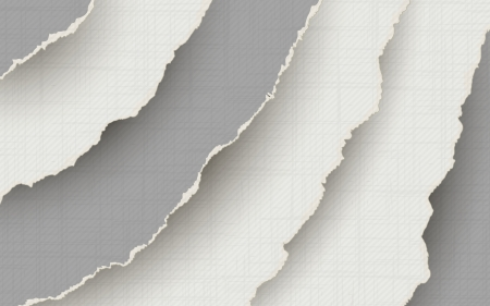 shredded: Torn paper background