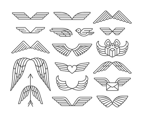 Linear wings and icons'set.