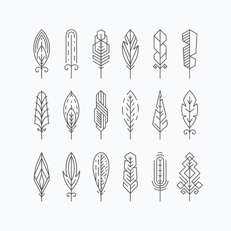 Graphical mono line feathers set. Design elements or linear signs. Isolated. Illustration