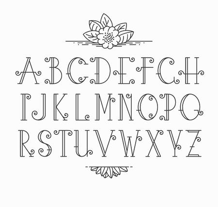 Vector mono line decorative font. Latin alphabet of vintage outline letters.