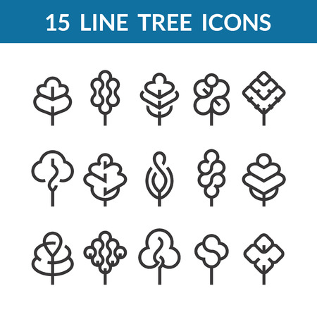 Set of graphical line trees and leaves, mono line design collection of nature signs, logos and symbols. Illustration