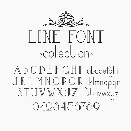 Vector mono line decorative font. Latin alphabet of vintage outline letters. Capitals, smalls and numerals.