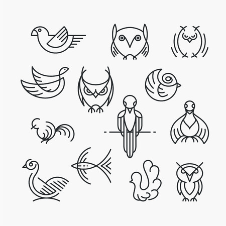 outline bird: Set of linear design birds, isolated line birds symbols. Empty outline objects. Illustration