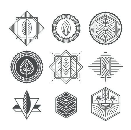 leaf line: Set of graphical natural labels, mono line and monochromatic design collection of eco signs, logos and symbols.