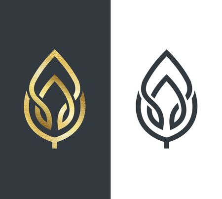 biology: Vector leaf, golden shape and monochromatic one. Abstract emblem, design concept, logo, logotype element for template.