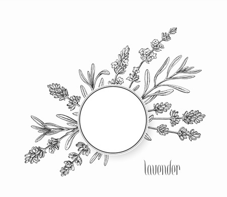 graphical: Floral graphical background, frame, vector hand drawn leaves and flowers of plant.