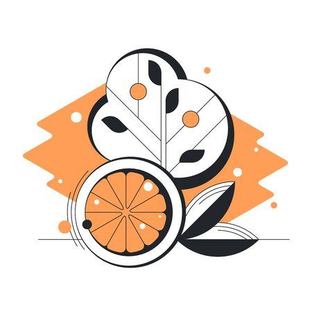 Abstract geometrical orange citrus vector flat fruit illustration.