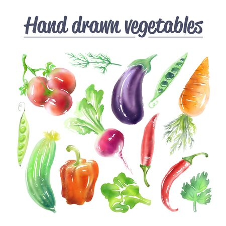 Digitally drawn high resolution set of vegetables. Isolated creative design healthy life objects. Vegetarian and vegan food pack.