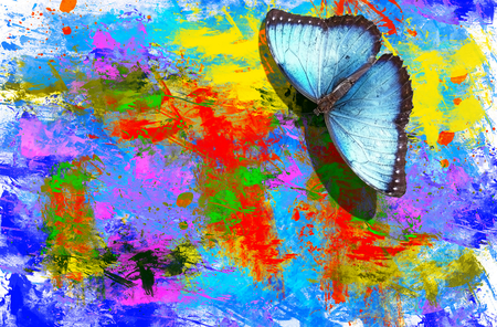 illustration with a picture of the butterfly with an abstract watercolor background Stock Photo