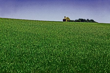 Rural farm barn building in a sloped green field with blue sky photo