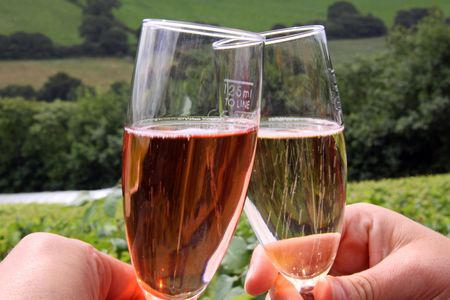 Glasses of rose  red and white sparkling wines with a vineyard background