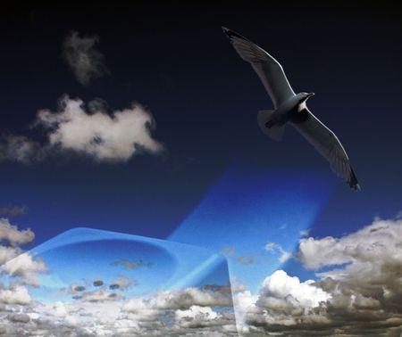 Telephone set - receiver, bird and blue cloudy sky photo