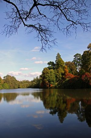 Rural autumn lake view of trees and reflections photo