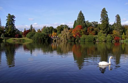 Rural autumn lake view of trees, swan, bridge and reflections photo